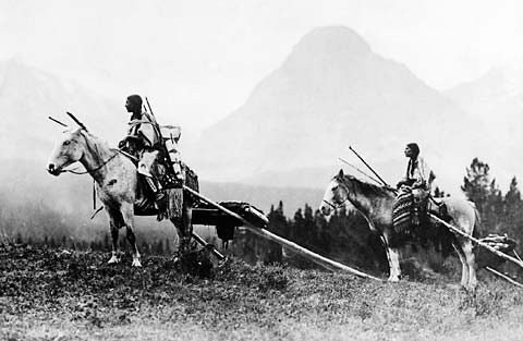 Image result for nez perce travois